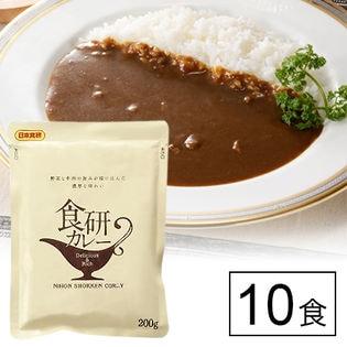 日本食研 業務用 野菜と牛肉の旨みが溶け込んだカレー10食