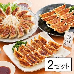 博多・神戸南京町・浜松 人気店の餃子食べ比べ(KF-GT5)