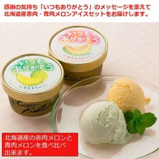【計8個(2種×各4個)】いつもありがとうラベル 北海道メロンアイスクリームセット