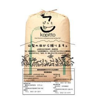 【30kg】30年産山梨県産 五百川 玄米30kgx1袋 ※特別栽培米