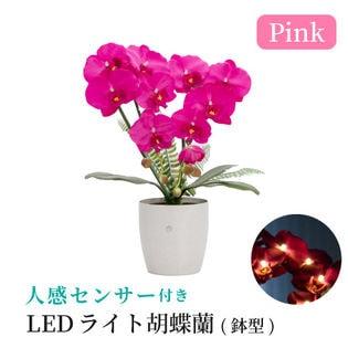 【ピンク】人感センサー付きLEDライト胡蝶蘭 鉢型