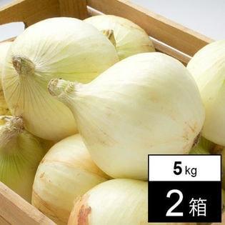 【予約受付】4/20~順次出荷【計10kg(5kg×2箱】淡路島産 新玉ねぎ