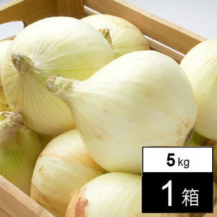 【予約受付】4/20~順次出荷【5kg箱】淡路島産 新玉ねぎ