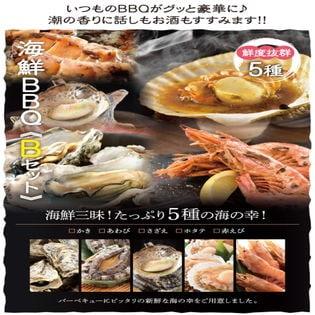 【5種14品3~4人前】海鮮バーベキューBセットたっぷり5種14品3~4人前海鮮BBQセット