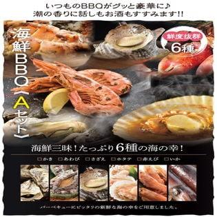 【6種13品3~4人前】海鮮バーベキューAセットたっぷり6種13品3~4人前海鮮BBQセット