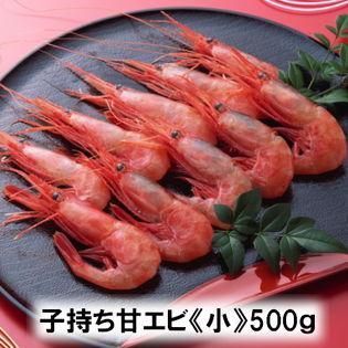 【小サイズ500g】福井県産『船凍甘エビ』