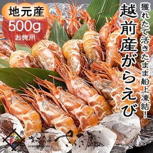 【500g】【甘味・旨味共に抜群の海老】越前 がらえび(がすえび・白とらえび) [えび刺し/焼えび]