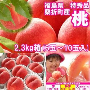 【約2.3kg(6~10玉入)】献上桃の郷『桑折町の特秀品桃』