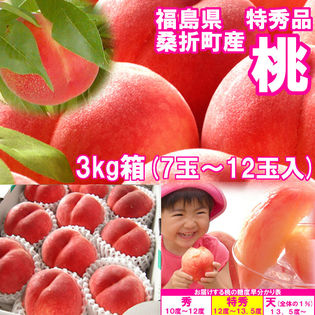 【約3kg(7~12玉入)】献上桃の郷『桑折町の特秀品桃』