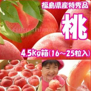【約4.5kg(16~25玉入)】献上桃の郷『桑折町の特秀品桃』