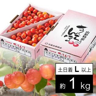 【予約受付】6/25~順次出荷【土日着】山形県産さくらんぼ 紅秀峰1kg Lサイズ以上