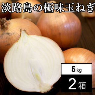 【約10kg(5kg箱×2)】淡路島の極味玉ねぎ
