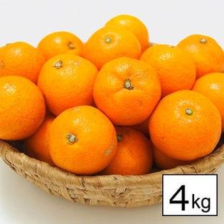 【約4kg】愛媛県産ハウスみかん(2S~2L)(ご家庭用・傷あり)