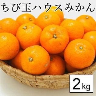 【約2kg】愛媛県産 ちび玉ハウスみかん(ご家庭用・傷あり)