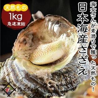 【1キロ】《冷凍便》日本海産さざえ 獲れたてサザエを高鮮度急速冷凍