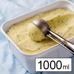 フルーツソムリエが作ったグリーンキウイジェラート 1000ml