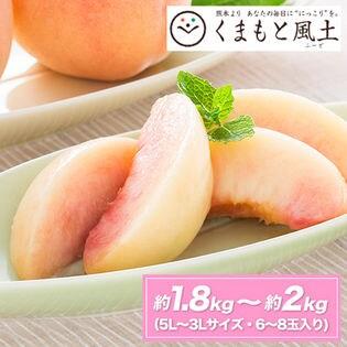 【5L-3Lサイズ/6玉-8玉入/約1.8-約2kg前後入】熊本県産 赤秀品 朝摘み桃