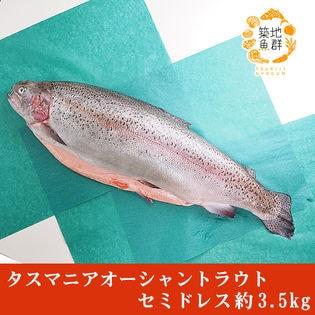 タスマニア オーシャントラウト セミドレス 約3.5kg