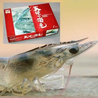 【2キロ(1キロ×2)】天使の海老 【生食用】ニューカレドニア産