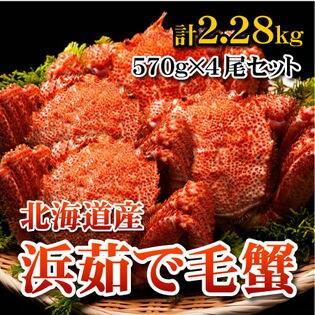 【計2.28kg(570g×4尾)】北海道産 浜茹で毛蟹 大570g×4尾セット