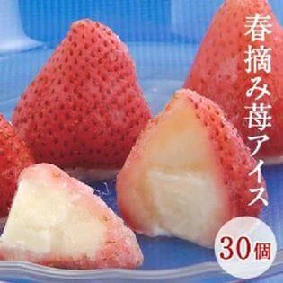 【30個入り】摘み苺アイス