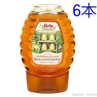 【6本】ダルボ フォレストフラワーハニー(森の花の蜂蜜) 300g