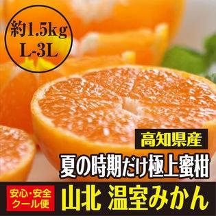 【約1.5kg(L-3L)】高知県産 秀品 極上の蜜柑 山北温室みかん 夏の時期だけの特別品