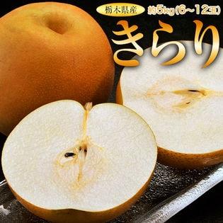 【約5kg(6~12玉)】栃木県産きらり梨 大玉