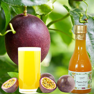 【180ml×1本】パッションフルーツ濃縮果汁希釈用