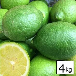 【約4kg】 瀬戸内産 国産レモン(ご家庭用・傷あり)
