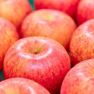 【10玉】果物屋さんが選んだ旬の林檎(りんご)