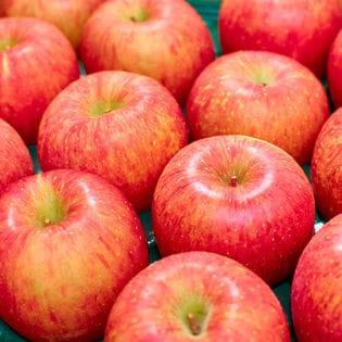 【20玉】果物屋さんが選んだ旬の林檎(りんご)
