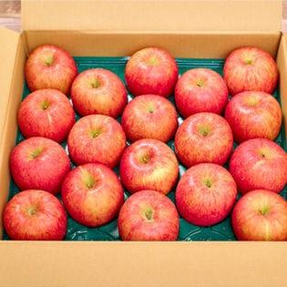 【10キロ箱(36-40玉)】果物屋さんが選んだ旬の林檎(りんご)