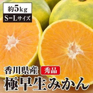 【約5kg(S-L)】 香川県産 秀品 極早生みかん 贈答にも使える