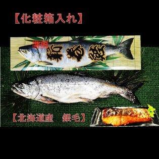 【2019年北海道産新物】銀毛 新巻鮭化粧箱入 1本2kg