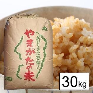 【30kg】令和元年産 新米 山形県産 あきたこまち 玄米