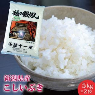 【10kg】新潟県産 こしいぶき≪令和3年産新米≫