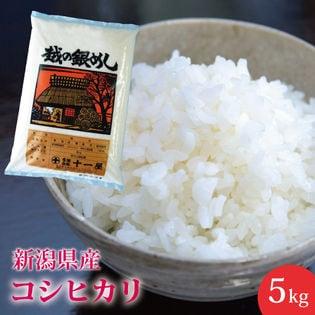 【5kg】新潟県産コシヒカリ ≪令和二年産新米≫