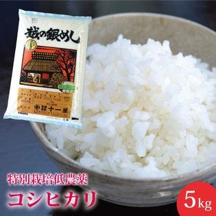 【5kg】特別栽培(低農薬) 新潟県産 コシヒカリ ≪令和二年産≫