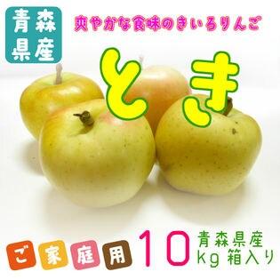 【10kg】青森県産林檎 とき ※ご家庭用