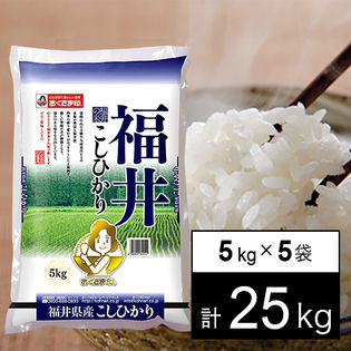 【25kg】令和元年産 新米 福井県産コシヒカリ