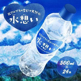 【500ml×48本(24本2ケース)】北アルプス飛騨山脈の雪どけ天然水「水想い」※2個口発送