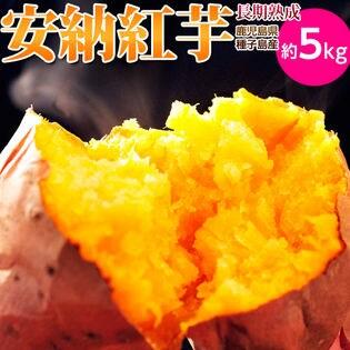 【予約受付】10/20~順次出荷【5kg】種子島産 安納紅芋 長期熟成
