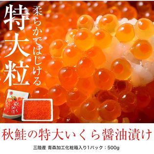 【500g】特大粒 三陸産 柔らかくてはじける秋鮭いくら