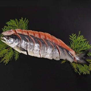 【1.4kg(6分割真空包装)】北海道産新巻鮭姿切身1.4kg