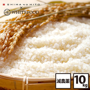 【10kg(5kg×2袋)】北海道産 ななつぼし白米(令和元年産 新米 特A )