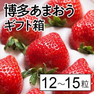 【12-15粒(ギフト箱)】福岡限定いちご 博多あまおう
