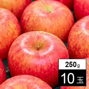 【250g×10玉】果物屋さんが選んだ旬の青森産ふじ