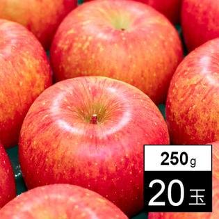 【250g×20玉】果物屋さんが選んだ旬の青森産ふじ