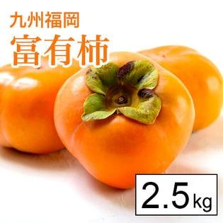 【2.5kg箱】甘柿の王様!名産地福岡より富有柿(8-10玉)